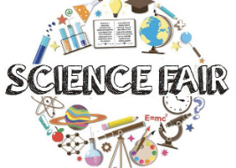 Science Fair 2019!