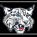 Charlotte Mascot Logo